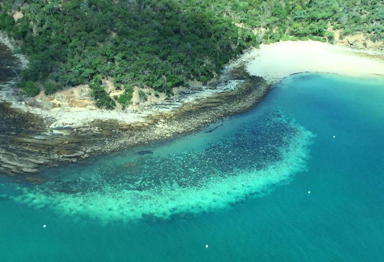 Het Groot Barrièrerif. Beeld AFP