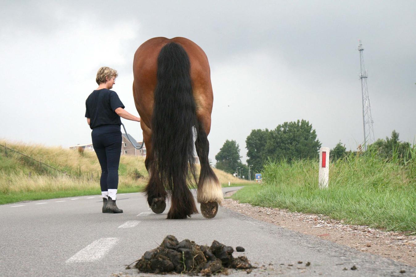 Paardenpoep op de openbare weg  is een van de grootste 'kleine ergernissen' onder de Veerse bevolking.