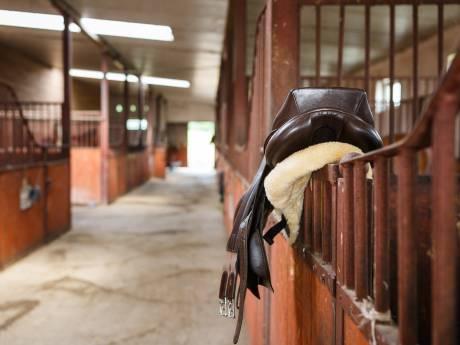 In week voor duizenden euro's aan paardenzadels gestolen: waar gaan die naartoe?