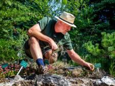 Hoe red je de tuin tijdens een hittegolf? Nou, niét door je gazon te sproeien. Dit zijn de tips <br>