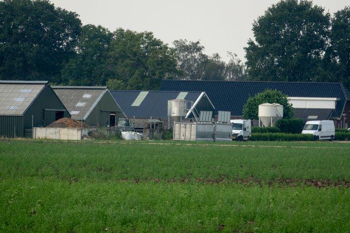 De nertsenfarm in Ven-Zelderheide.