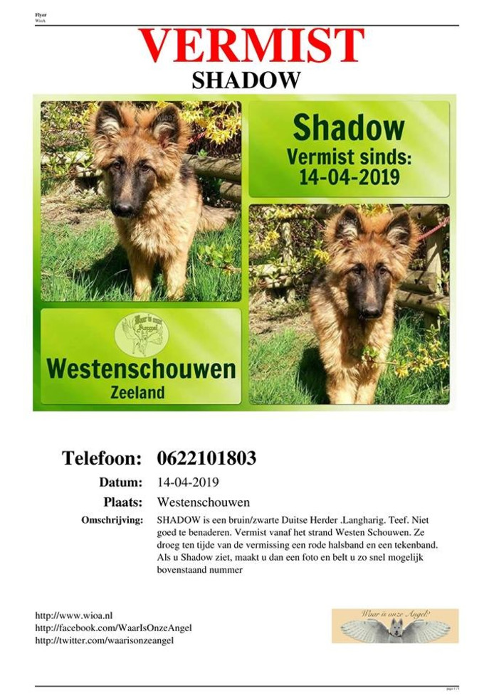 Flyer van de vermiste Shadow