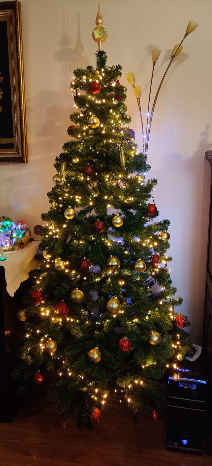 De familie De Haas uit Velp bij Cuijk heeft een prachtige klassieke kerstboom staan.