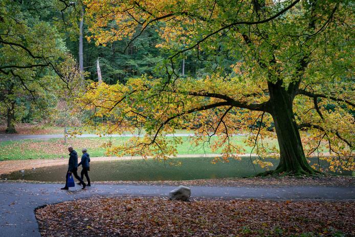 Het groen in en om Arnhem, zoals hier in Park Sonsbeek, wordt door de Arnhemmers bovengemiddeld gewaardeerd.