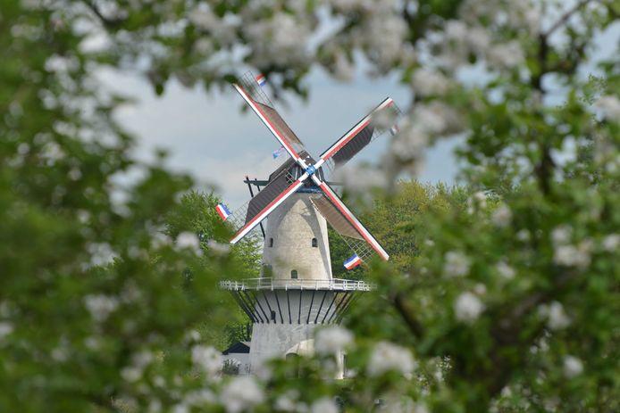 Een plaatje in het Lingelandschap: molen De Vlinder in Deil.