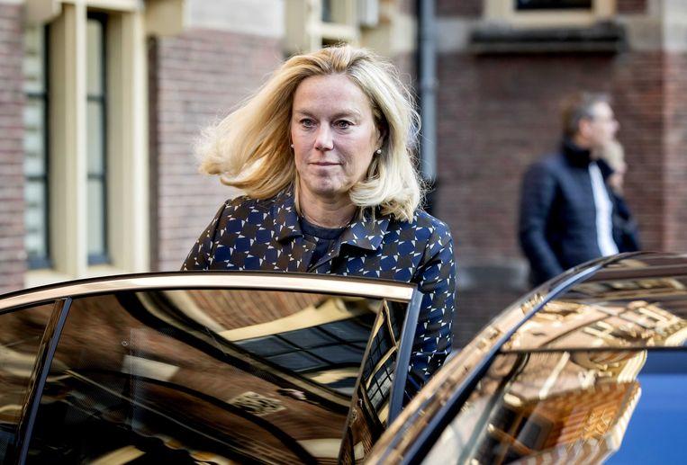 Minister voor Buitenlandse Handel en Ontwikkelingssamenwerking op het Binnenhof.   Beeld null