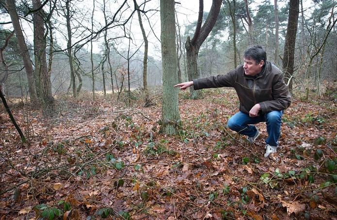 Drs Jan Roymans laat zien waar het onderkomen van Willem I stond in 1831. In de bossen langs de rijksweg was in die tijd een oefenkamp voor militairen die tegen de belgische onafhankelijkheid streden.