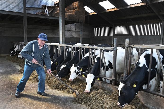 Het schoonvegen van de stal is een van de vele klusjes op zorgboerderij De Horst in Mill.