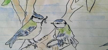 Bijzondere vogellogboek uit de oorlog van Peter vanStraaten te zien op Facebook