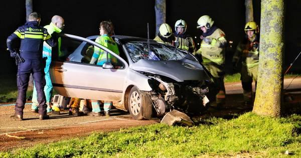 Automobilist gewond na botsing tegen boom in Oss.