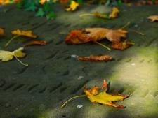 Graven op begraafplaats Stratum vernield door geknakte boom