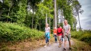 Toerisme Vlaams-Brabant ontwikkelt wandelboek #Dewandelprovincie in vier talen om expats te laten genieten van vakantie in eigen land