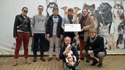 CD&V-jongeren steunen dierenasiel