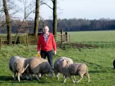 Bedrijfshulp Leende: snel hulp als de boer even niet kan werken