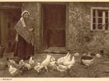 Zelfs bij de zusters in Oijen was geen kip veilig