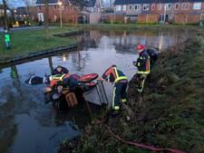 Paard en wagen te water in Nieuwerbrug