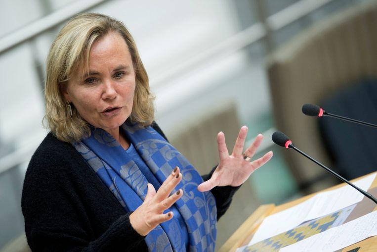 Vlaams minister van Wonen Liesbeth Homans (N-VA).