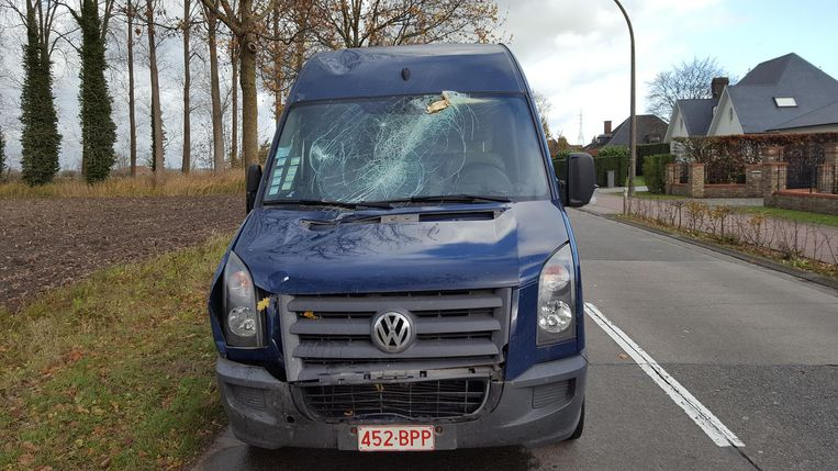Een Brits koppel schrok zich een hoedje toen er in Sint-Kruis plots een zware tak op de voorruit van hun auto viel .