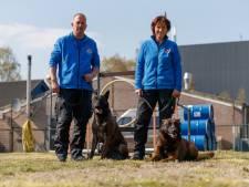 Nederlandse honden speuren langs de grenzen wereldwijd: 'We trainen ze als middel of als wapen'