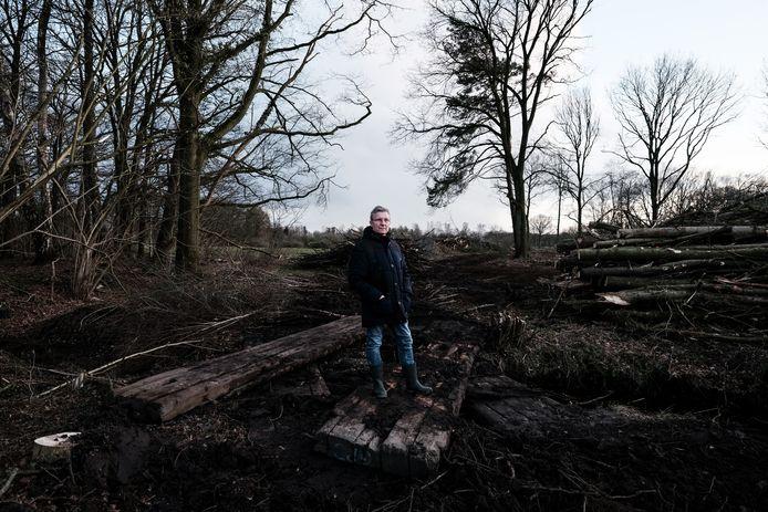 Rinus te Hofsté te midden van de gekapte bomen in Willinks Weust.