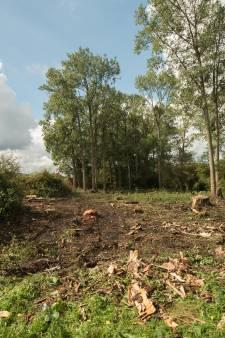 Rijkswaterstaat heeft bomenkap Wezep ten onrechte niet gemeld