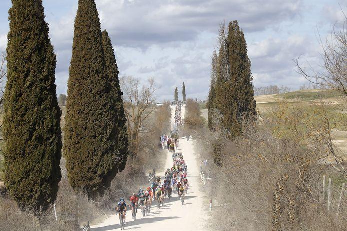 Het peloton slingert door het Toscaanse land bij de Strade Bianchi van vorig jaar.
