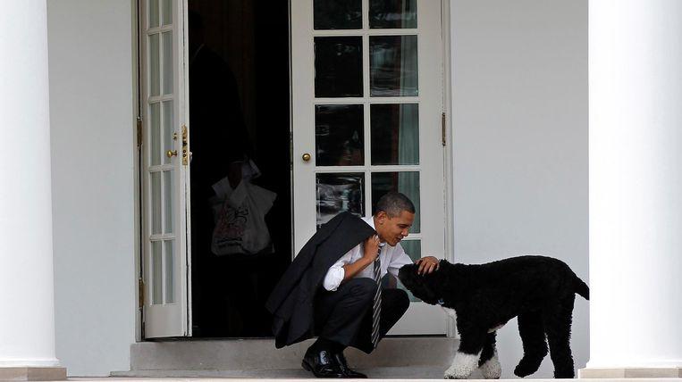 Obama aait zijn hond buiten het Oval Office. Beeld ap