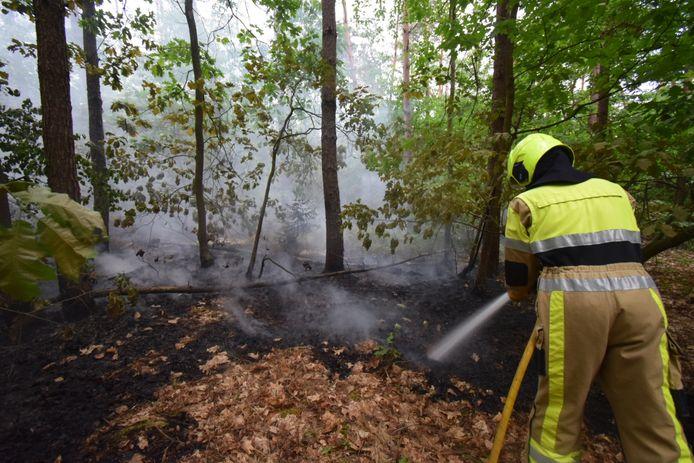 De brandweer heeft haar handen vol aan de bosbrand in Groesbeek.