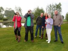 Golfers en vogelaars speuren naar bijzondere vogels: 'Kijk, een scholekster'