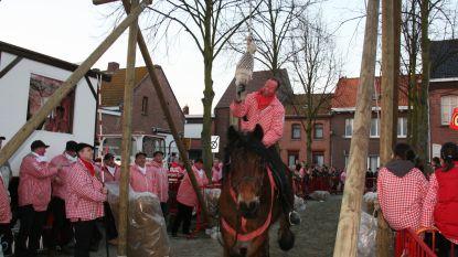 Zin in een brok onvervalste folklore? Kom dan dit weekend naar het gansrijden in de Antwerpse polderdorpen