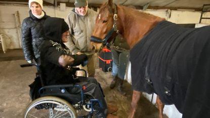 """Mensen met beperking starten met paardentherapie bij Patrick Kerkhofs: """"Ik wil cowboy worden!"""""""