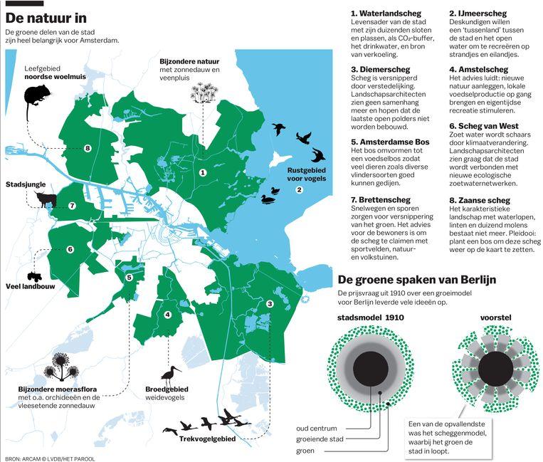 Afbeeldingsresultaat voor scheggen krant amsterdam