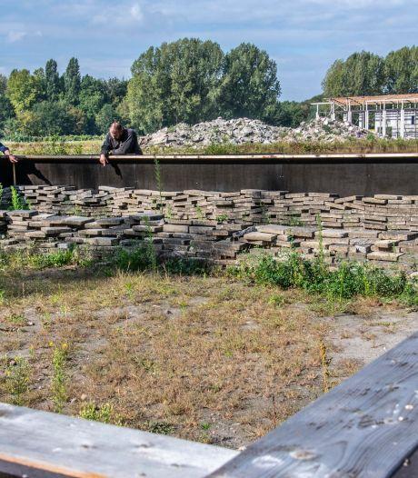 Strijd om Koningshoeven duurt voort, maar de Franse muurhagedis komt niets tekort