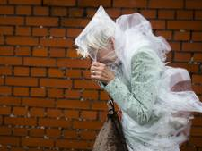 Zware windstoten zorgen donderdag voor overlast