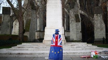 Tijdelijke oplossing voor 27.000 Britten in België bij brexit zonder akkoord
