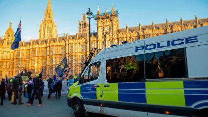 Britse politie raadt winkeliers aan extra veiligheidsagenten in te huren uit vrees voor chaos bij 'no deal'-brexit