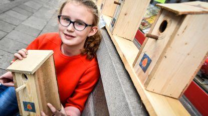 Saartje (12) verkoopt vogelkastjes voor goed doel