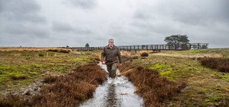 Wat doet de boswachter in een snelstromende heidebeek?