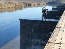 Moerputtenbrug straks weer parel in moerasbos