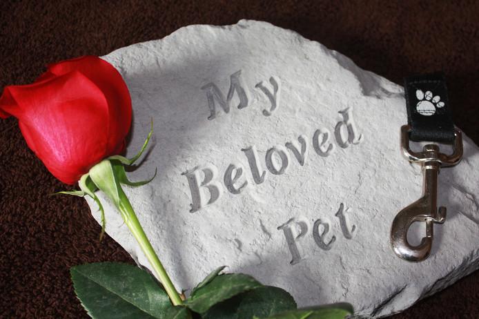 Gedenksteen voor een overleden huisdier. Foto ter illustratie.