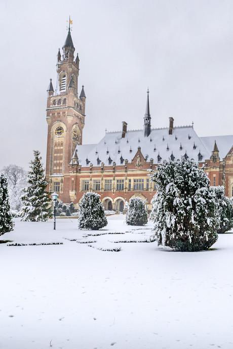In beeld: de mooiste winterfoto's uit de regio
