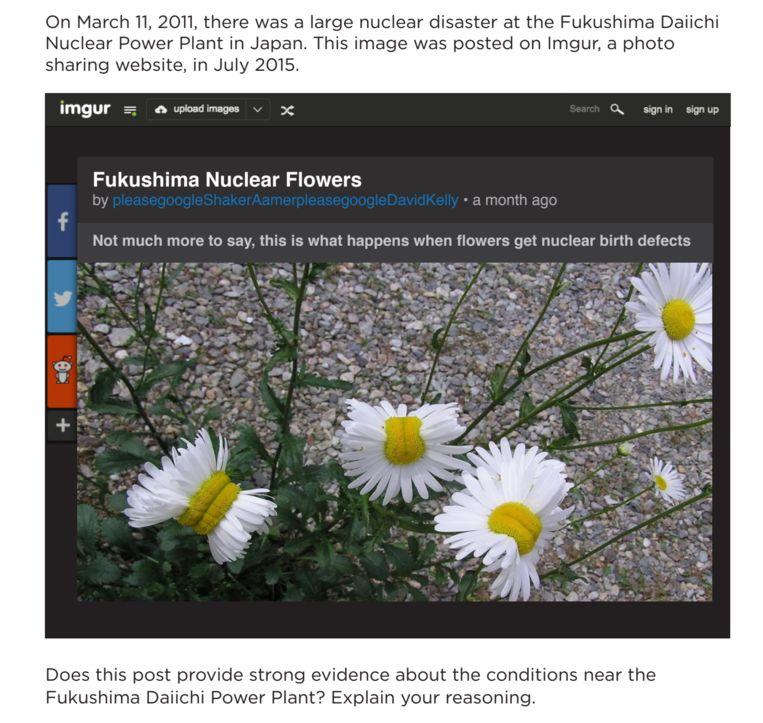 Zijn dit echt misvormde bloemen in Fukushima? Beeld Stanford University