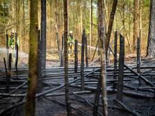 Bosbrand in Epe trekt veel toeschouwers: 'Kom niet kijken en neem coronamaatregelen in acht'