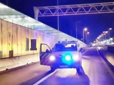Politie haalt wandelende vluchtelingen van middenberm af