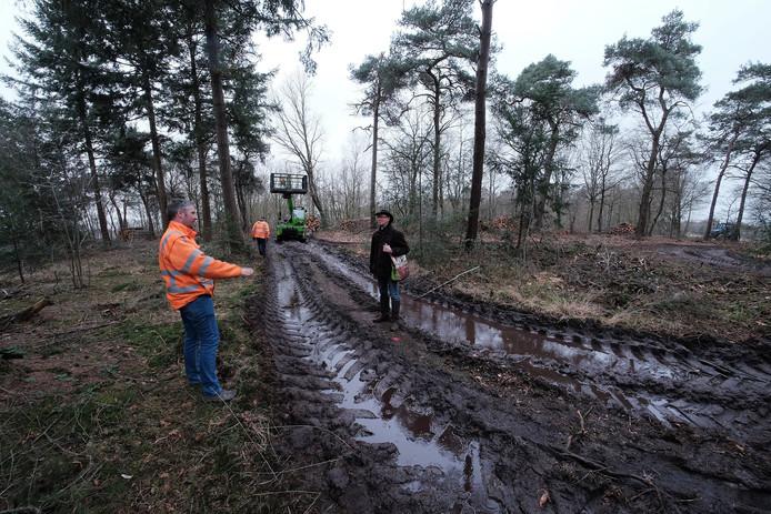 Aan het werk in het bos bij Varssel. De rechter heeft aangegeven dat dit mocht. Archieffoto: Jan van den Brink