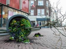 Daders vernieling plantenbakken Kleiweg op camera, maar ontspringen de dans: niet herkend