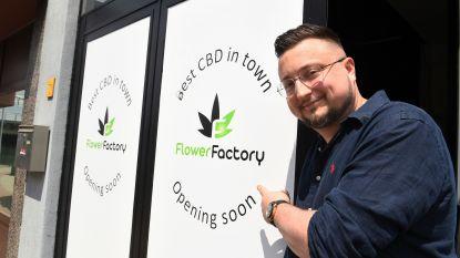 Karel Leyssens (31) opent met Flower Factory nu ook legale cannabiswinkel op de Diestsesteenweg in Kessel-Lo
