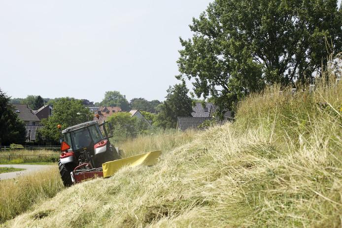 Er lopen in 2019 veel contracten af voor het gras op de dijken in het rivierengebied.