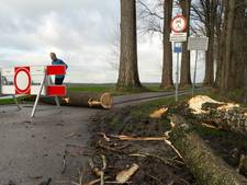 Veensteeg in Wageningse Binnenveld nog dicht na storm
