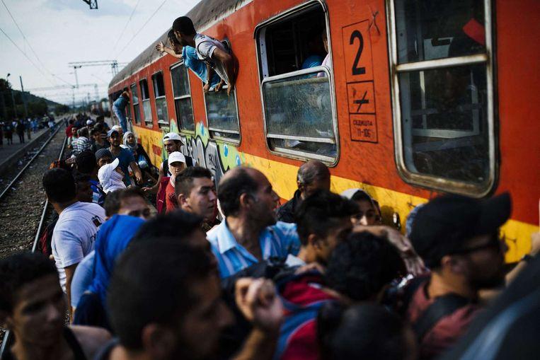 Vluchtelingen proberen in Macedonië in een trein om zo naar Hongarije door te reizen. Beeld afp